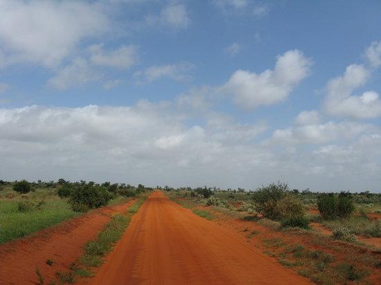Kenya: view