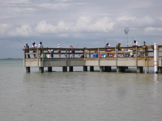 Wyspa sanibel southwest gulf coast zdj cie fishing for Sanibel fishing pier