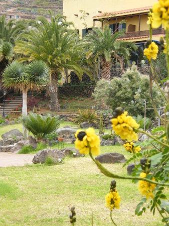 Hacienda de Anzo: view up to hotel from garden