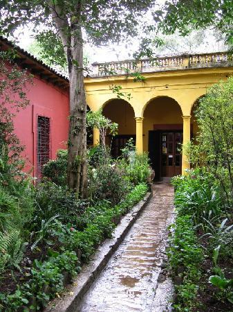 Casa Na Bolom: Na Bolom path
