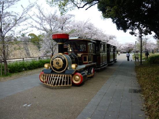 写真大阪市枚