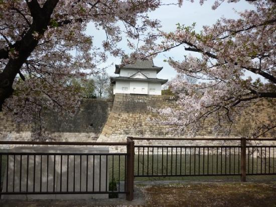 Osaka con un presupuesto reducido