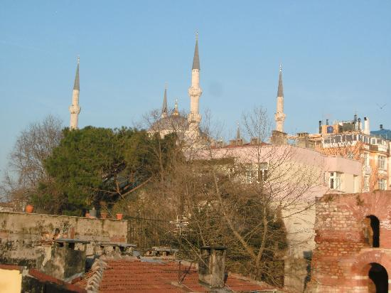 Big Apple Hostel & Hotel: blue mosque from the terrace
