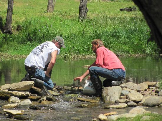 Gold Prospecting Adventures: learning from the best