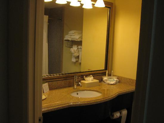Holiday Inn Express Hotel & Suites Orlando - International Drive: Restroom