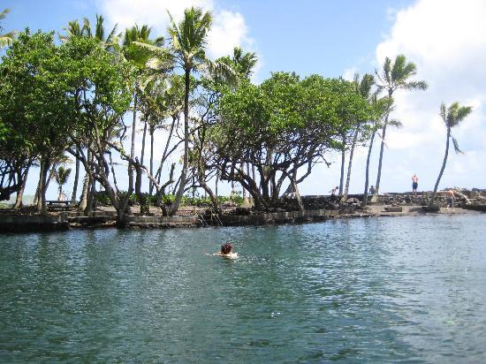 Pahoa, Havaí: 癒されます!