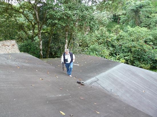 Pachijal Reserva Ecologica: Dach der Lodge - wo sind die Tukane und Felsenhähne?