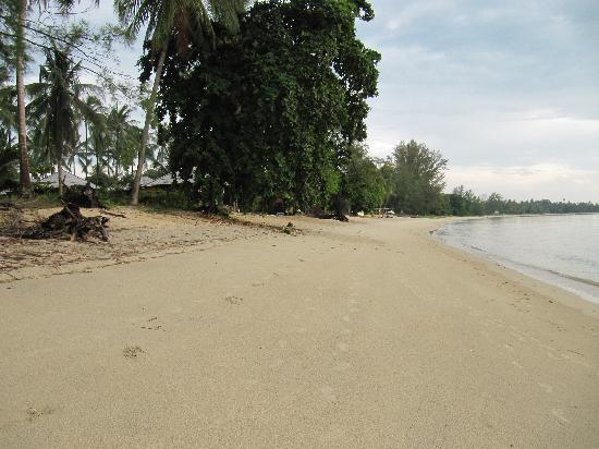 Nikki Beach Resort & Spa : Our beach