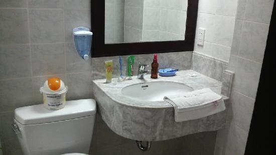 Hotel Asia: トイレ、シャワーも合格