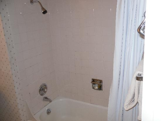 The Shoreline Inn: Shower