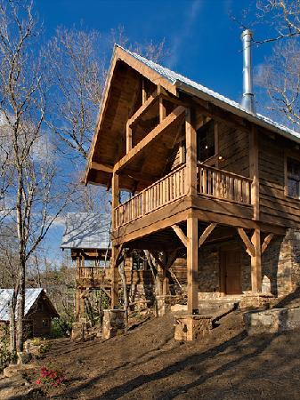 Wild turkey 39 s roost picture of cheshire cabin for Tripadvisor asheville nc cabin rentals
