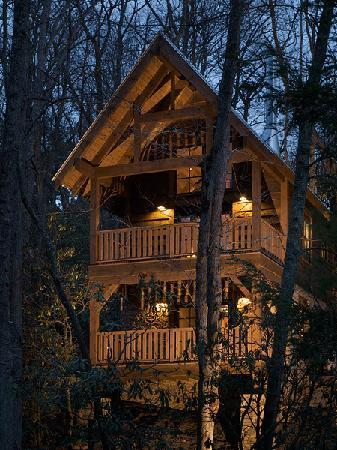 woodpecker 39 s hollow at night picture of cheshire cabin. Black Bedroom Furniture Sets. Home Design Ideas