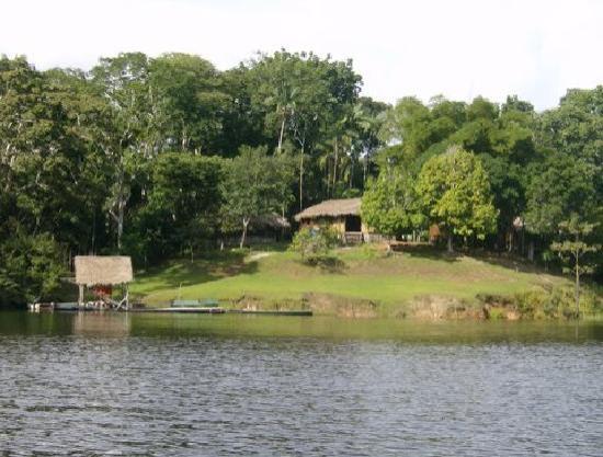 Amazon Gero Tours: Dolphin Lodge