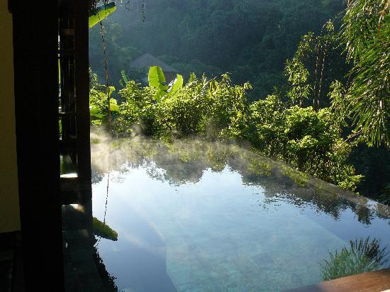 Hanging Gardens of Bali: La piscina de la habitación