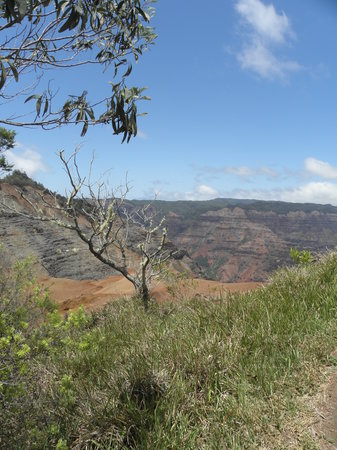 Kauai Photo Tours: Waimea Canyon