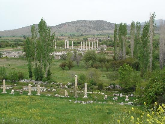 Aphrodisias : view from path before walking down
