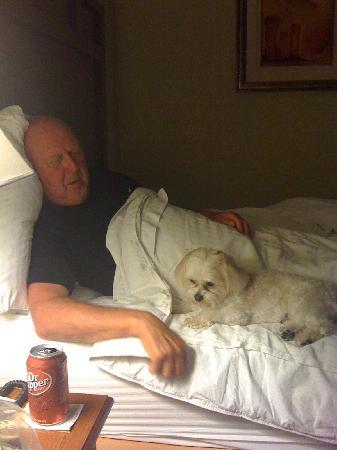 Sophie and daddy enjoying the LaQuinta in Valdosta