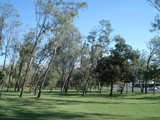 Contessa Holiday Apartments: The park on the Spit, seen from the Spit walk