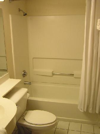 Microtel Inn & Suites by Wyndham Arlington/dallas Area : The bathroom