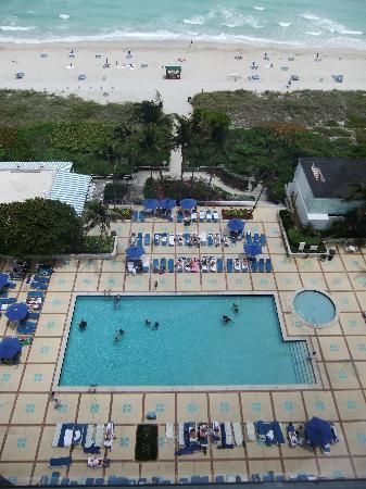 Miami Beach Resort and Spa: pool view from my room on 14th floor