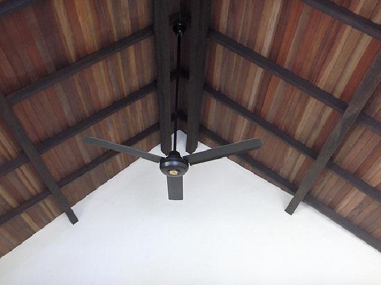 Hotel Amazon Bed & Breakfast: bungalow ceiling