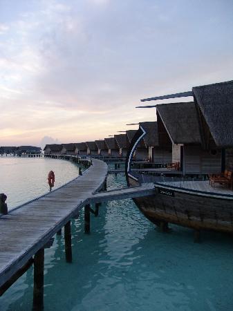 COMO Cocoa Island: Just after Sunrise at Cocoa Island
