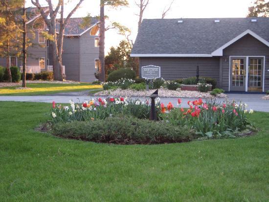Bay Shore Inn: garden outside the front desk