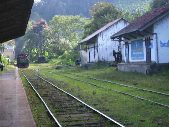 Waterfalls Homestay: Der Bahnhof in Ella