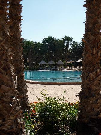 Palm Beach Palace Tozeur : Piscine SOFITEL TOZEUR