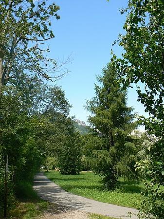 Der Steinweidenhof: Alpbachweg * Ettenhausen - Schleching