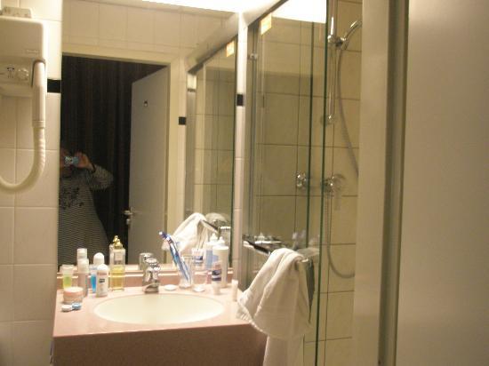 Falcon Plaza Hotel: Baño