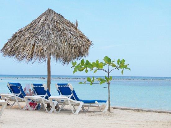 Runaway Bay, Jamaica: Snorkel beach