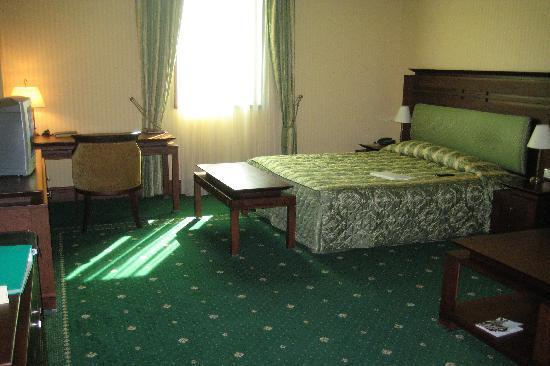 Grand Hotel Sofia: My very spacious room