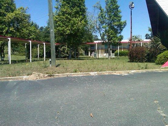 Sunset Inn Manning : uncut grass
