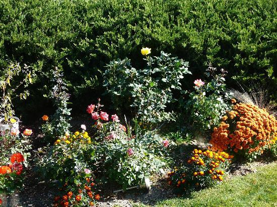 KeriGlen Lakeview Bed & Breakfast: Flower GArden