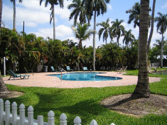 Rock Lake Resort: the pool