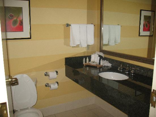 Bathroom W Aveda Amenities Picture Of Renaissance Fort Lauderdale Cruise Port Hotel Fort
