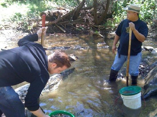 California Gold Panning: Digging to fill our buckets