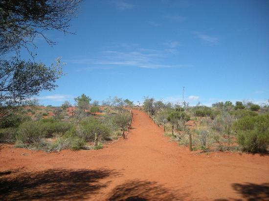 Outback Pioneer Hotel & Lodge, Ayers Rock Resort: 展望台までの道