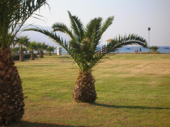 Hotel Delfina Beach: la vue de notre chambre