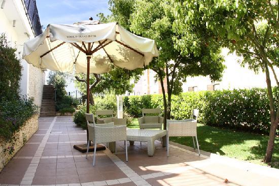 Virgilio Grand Hotel: Garden