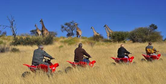 Zebra Kalahari Lodge: Go for a quad-bike drive in the Kalahari