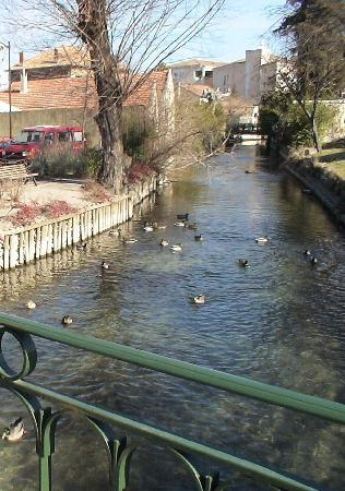 L'Isle-sur-la-Sorgue, Fransa: 村にはきれいな川が流れています