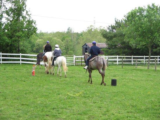 First Farm Inn Horseback Riding : Bodacious, Sage and Ginger