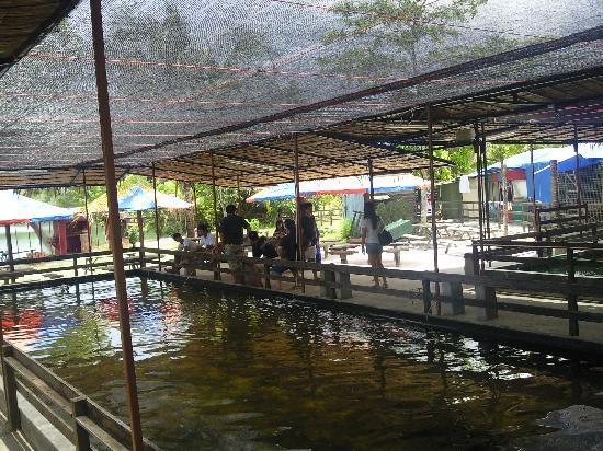 Chalet Style Picture Of Celestial Resort Pulau Ubin Tripadvisor
