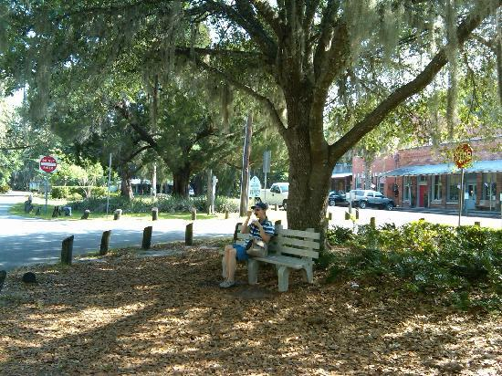 Herlong Mansion Bed and Breakfast Inn: Ice cream neath the moss in Micanopy