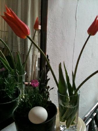 Turkuaz Hotel: nos tulipes pour embaumer la chambre