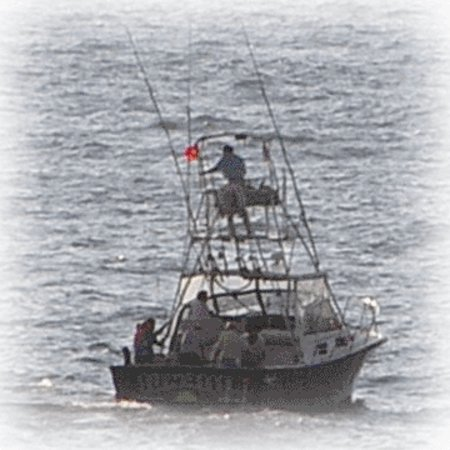 Regular guy charters cape canaveral all you need to for Cape canaveral fishing charters