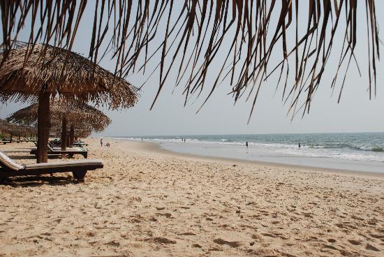 Taj Exotica Goa: Spiaggia