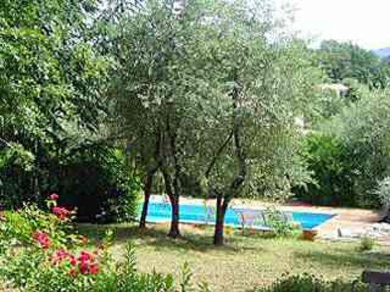 Aux Sources : Le jardin et la piscine
